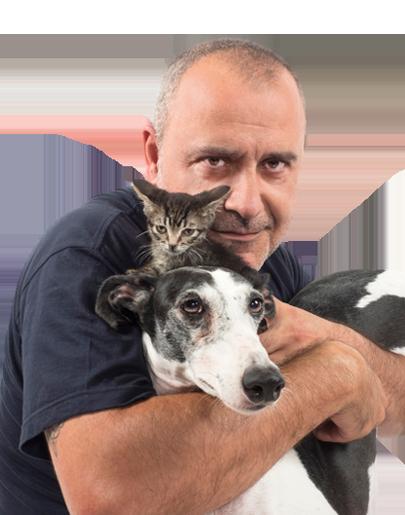 Como El Perro Y El Gato Radio Ondacero España Ue Ondacero Radio